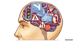 Science - Brain work   The Economist